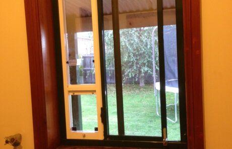 Cat Window Insert