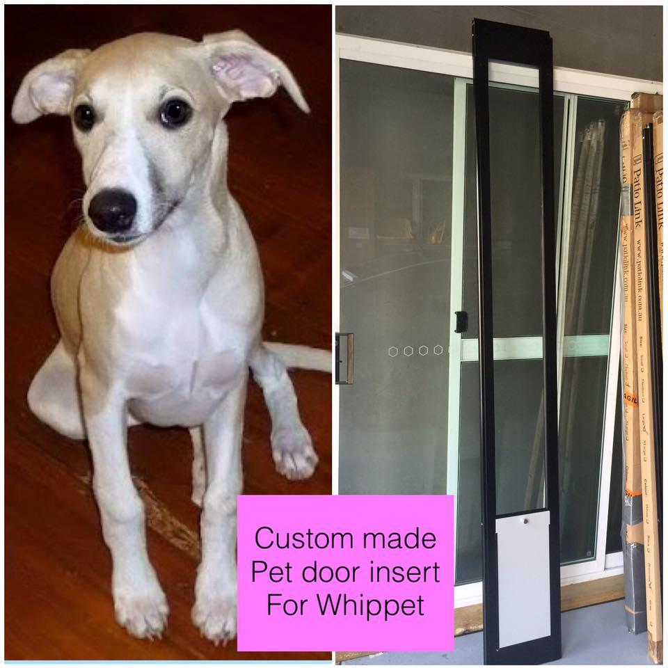 Whippet custom