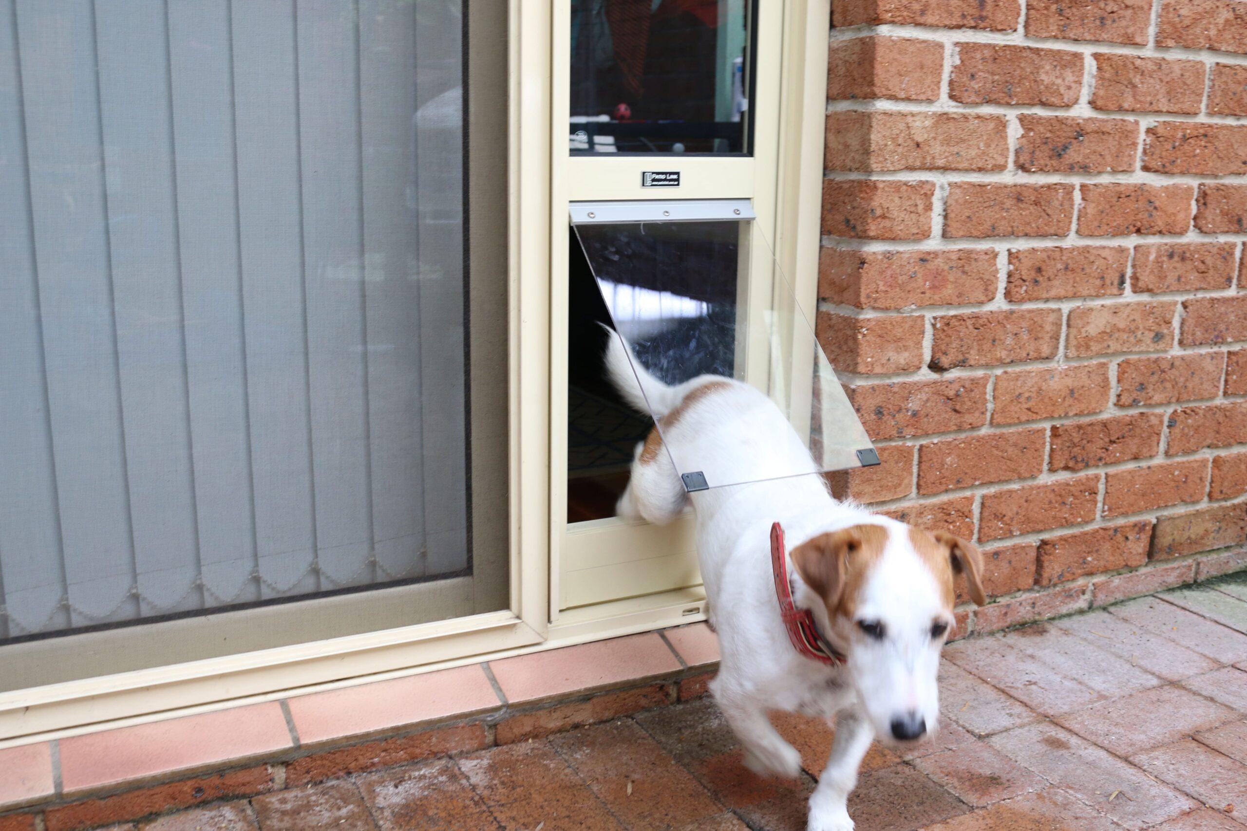 Large Primrose Pet Door