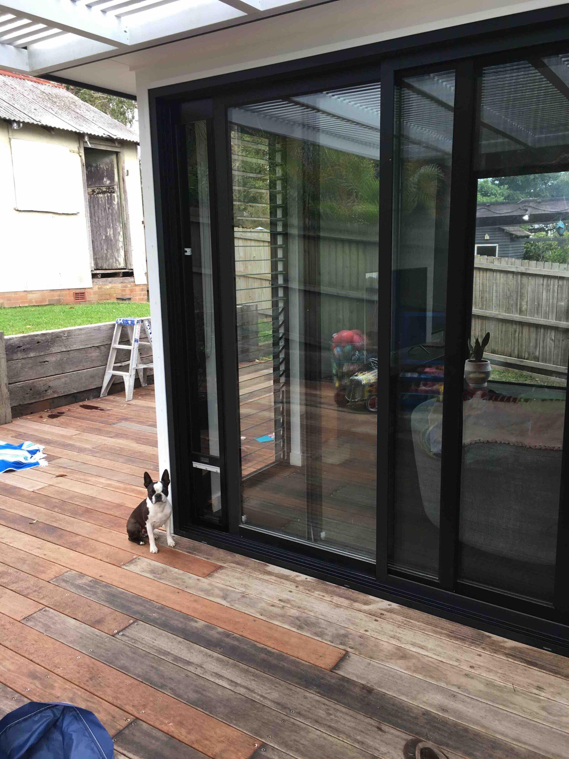 Med Taller FrameGlass Boston Terrier