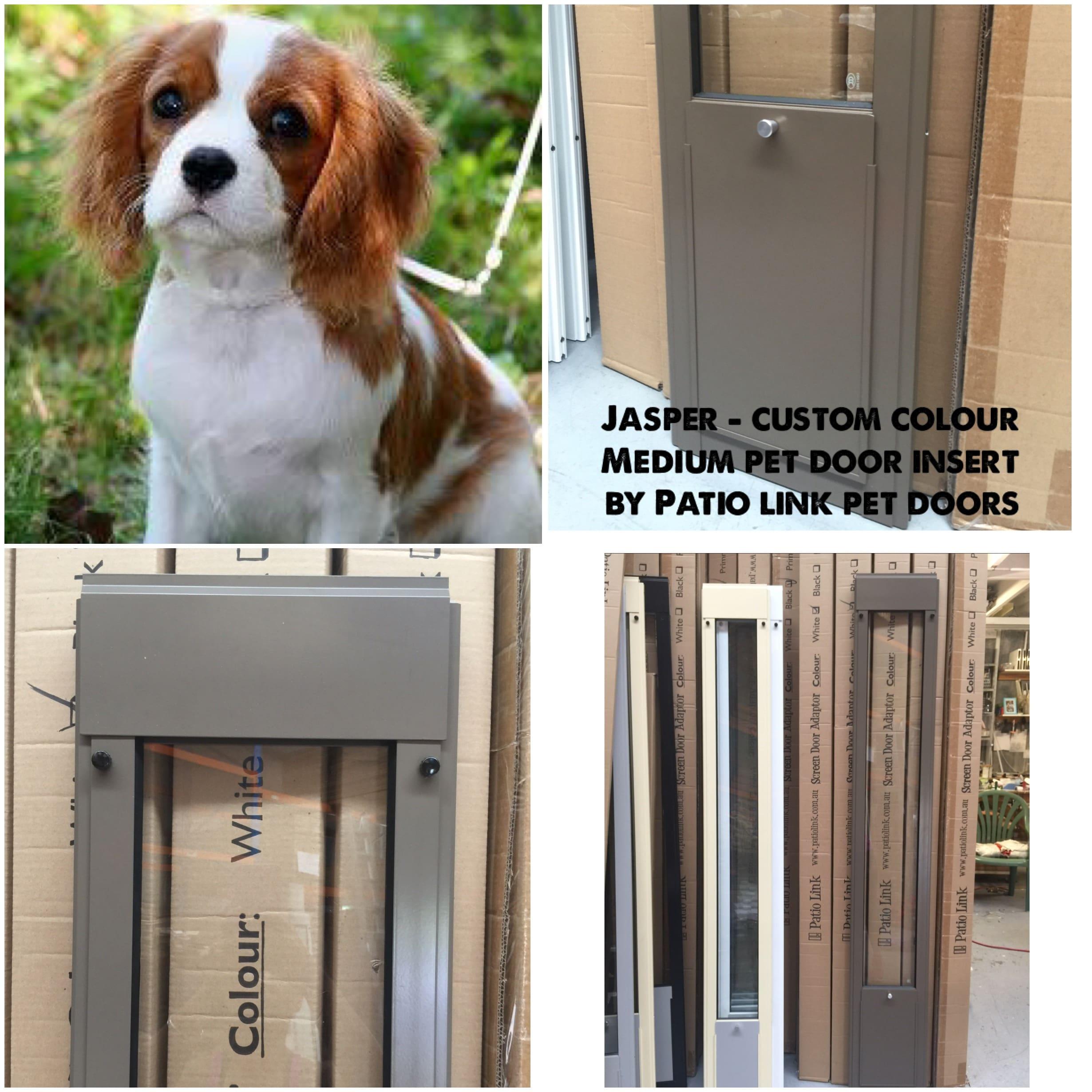 Jasper custom colour pet door insert
