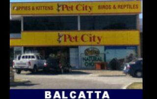 Pet City Balcatta