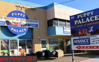 Puppy Palace QLD